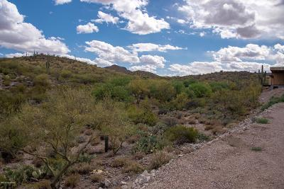Tucson Residential Lots & Land For Sale: 2955 W Placita Sierra Tortuga #2