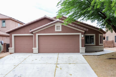 Pima County Single Family Home For Sale: 6443 W Elk Falls Way