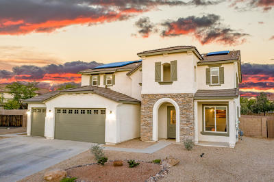 Tucson Single Family Home For Sale: 6899 S Tackweed Way
