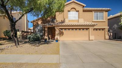 Oro Valley Single Family Home For Sale: 11276 N Seven Falls Drive