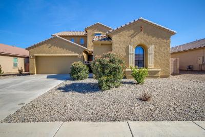 Marana Single Family Home For Sale: 12860 N White Fence Way