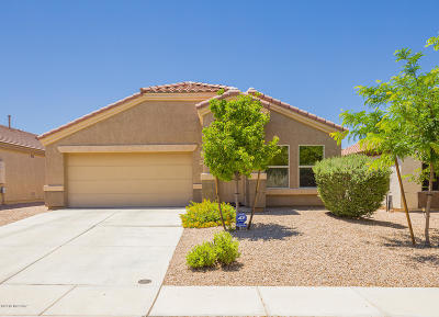 Tucson Single Family Home For Sale: 6672 S Stone Fly Drive