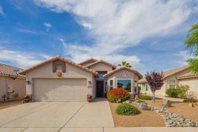 Tucson Single Family Home For Sale: 2594 W Summits End Court