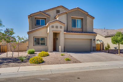 Marana Single Family Home Active Contingent: 8958 W Twin Springs Drive