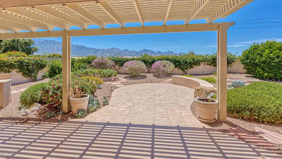 Tucson Single Family Home For Sale: 62887 E Border Rock Road
