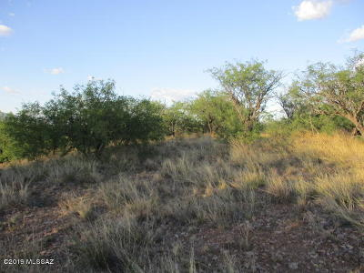 Rio Rico Residential Lots & Land For Sale: 920 Aciano Court #66/13