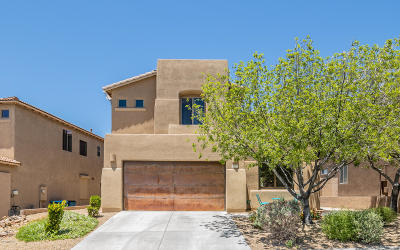 Pima County Single Family Home For Sale: 10473 S Cutting Horse Drive