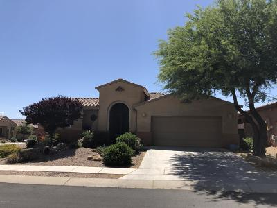 Pima County Single Family Home For Sale: 10170 S Kraft Drive