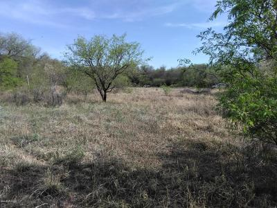 Tubac Residential Lots & Land For Sale: Sub Tubac Townsite Lots 1 & 4