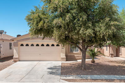 Tucson Single Family Home For Sale: 8850 S Desert Valley Way