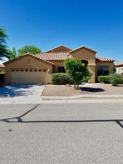 Tucson Single Family Home For Sale: 6534 W Misty Mountain Way