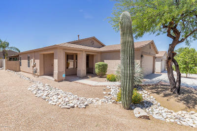 Tucson Single Family Home For Sale: 10042 E Rocky Vista Drive