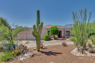 Tucson Single Family Home For Sale: 8753 E Bear Paw Place