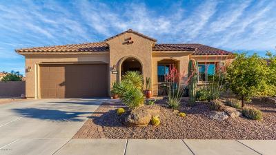 Marana Single Family Home For Sale: 6609 W Tuckup Trail