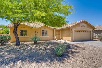 Tucson AZ Single Family Home For Sale: $255,000