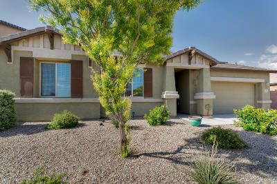 Marana Single Family Home For Sale: 11130 W Copper Field Street