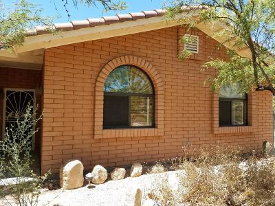 Pima County Single Family Home For Sale: 4705 N Avenida De Franelah