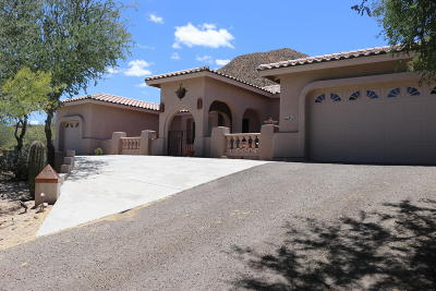 Tucson Single Family Home For Sale: 861 N Circulo Zagala