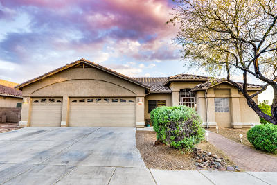 Marana Single Family Home For Sale: 5145 W Bass Butte Lane