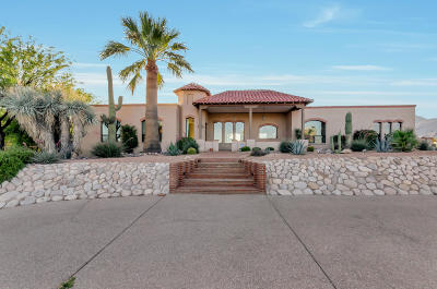 Tucson Single Family Home For Sale: 5615 E Rio Verde Vista