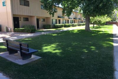 Tucson Condo For Sale: 1318 S Avenida Polar #F-105