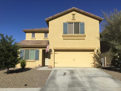 Pima County Single Family Home For Sale: 6715 S May Fly Drive