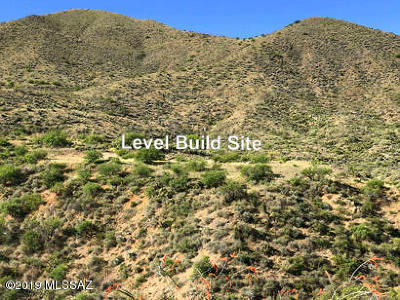 Vail Residential Lots & Land For Sale: 18420 S Camino Chuboso