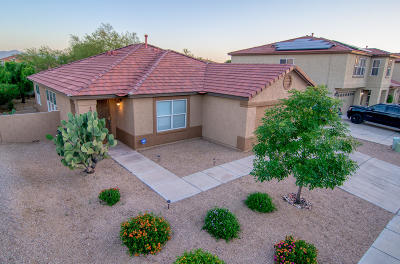 Pima County Single Family Home For Sale: 8494 E Ramona Madera Lane