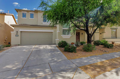 Pima County Single Family Home For Sale: 14211 S Via Abarca