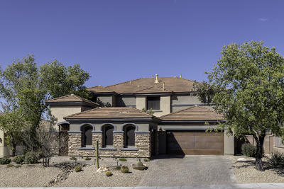 Single Family Home For Sale: 1195 E Stronghold Canyon Lane
