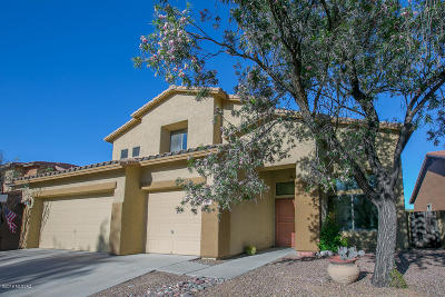 Pima County Single Family Home For Sale: 6413 S Woodland Hills Drive