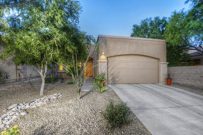 Pima County Single Family Home For Sale: 5454 N Little River Lane