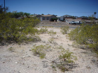 Residential Lots & Land For Sale: 3693 S Camino Seco #E
