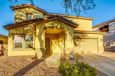 Vail Single Family Home Active Contingent: 10855 S Camino San Clemente