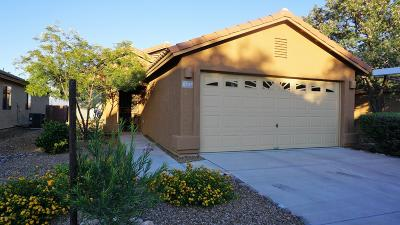 Tucson Single Family Home For Sale: 6747 S Sonoran Bloom Avenue