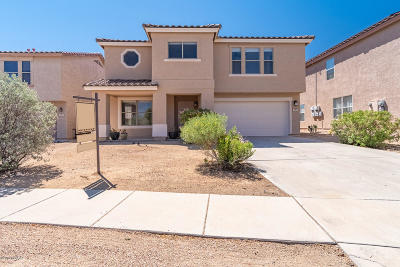 Tucson Single Family Home For Sale: 3989 W Rocky Spring Drive