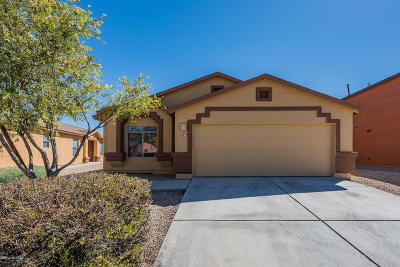 Tucson Single Family Home For Sale: 2379 E Calle Lena Verde
