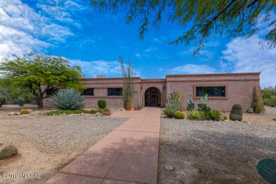 Tucson Single Family Home For Sale: 2880 N Silver Spur Drive