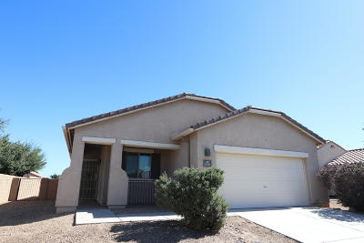 Tucson, Oro Valley, Marana, Sahuarita, Vail Single Family Home For Sale: 11332 W Massey Drive