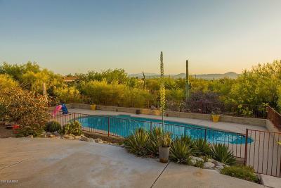 Tucson Single Family Home For Sale: 3700 E Gibbon Mountain Place