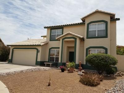 Single Family Home For Sale: 7163 W Rivulet Drive
