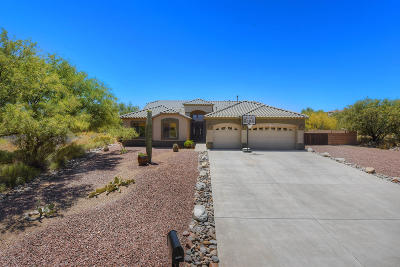 Vail Single Family Home Active Contingent: 13800 E Cienega Creek Drive