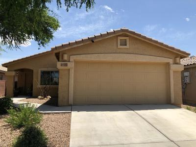 Pima County, Pinal County Single Family Home Active Contingent: 9041 S Mystic Meadow Road