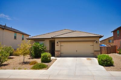 Marana Single Family Home For Sale: 14177 N Stone Pendant Way