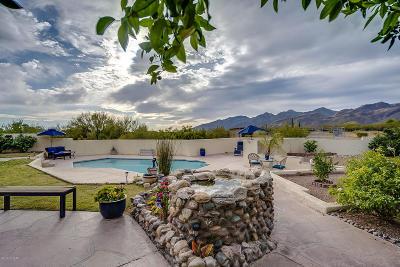 Tucson Single Family Home For Sale: 10675 E Calle Vaqueros