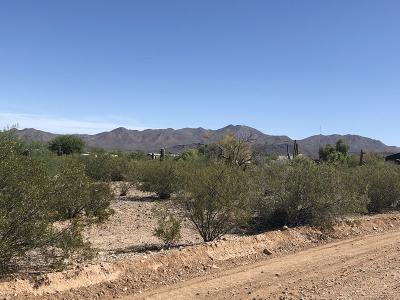 Residential Lots & Land For Sale: 1830 S Calle Pomo #-
