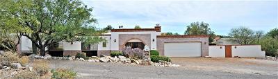 Pima County, Pinal County Single Family Home For Sale: 1302 E Moonridge Road