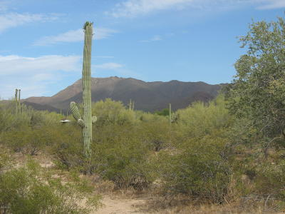 Residential Lots & Land For Sale: 12363 W Sunset Road