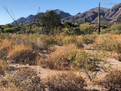 Tucson Residential Lots & Land For Sale: 5656 N Via Elena #320