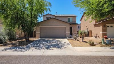 Tucson Single Family Home For Sale: 1061 W Sea Urchin Street